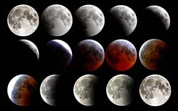 moon, phases